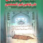 اهلاك الوهابيين على توهين قبور المسلمين